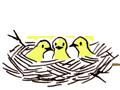 株式会社鳥子